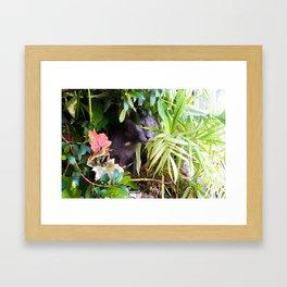 Stalker Framed Art Print