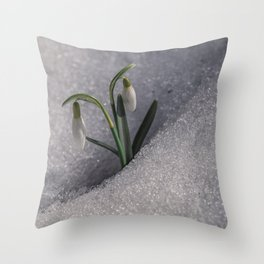 Snowdrop flowers in the snow Throw Pillow