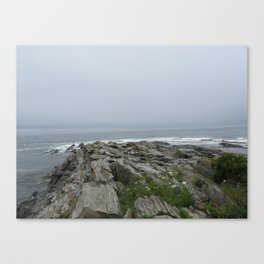 Gray Sky Canvas Print