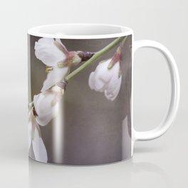 spring cherry blooms Coffee Mug