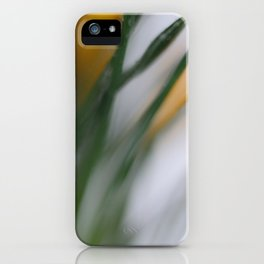 yellow crocus in spring iPhone Case