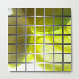 Limes & Square Grid Collage Metallic Metal Print