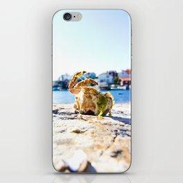 Dead Crab iPhone Skin