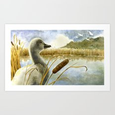 The Ugly Duckling Sees Swans in the Sky Art Print