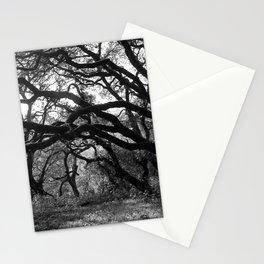 Oak Tree Tunnel Stationery Cards