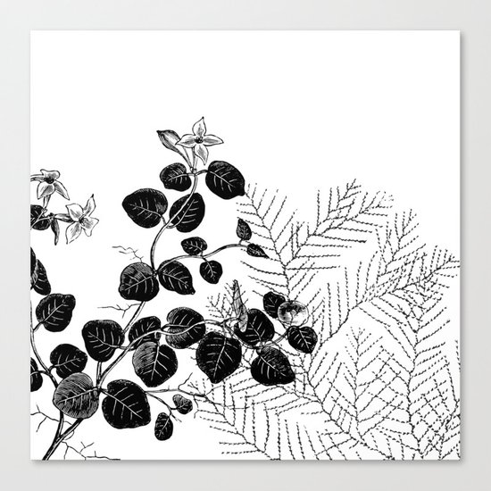 Minimal Spring design Canvas Print