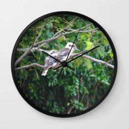 Kookaburras Wall Clock