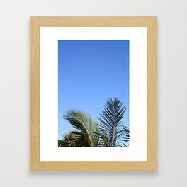 Palm Tree Sky Framed Art Print