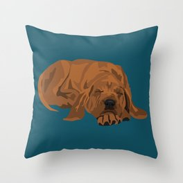 Silas Throw Pillow