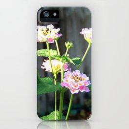 Lantana 2 iPhone Case