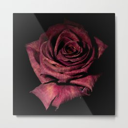 Deep Red Rose On Black Background Metal Print