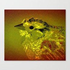 Amber Bird Canvas Print