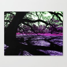 Oak Shadows Pink Canvas Print