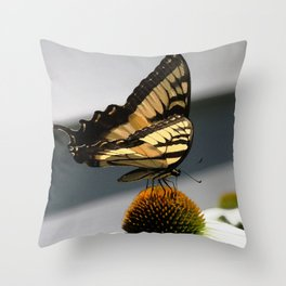 Swallowtail Butterfly on Echinacea Cone Flower Throw Pillow