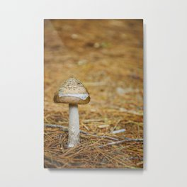 A Feel of Autumn in the Summer by Althéa Photo Metal Print
