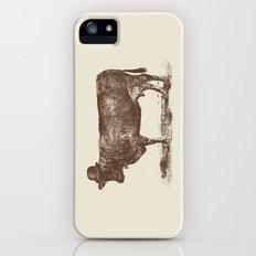 Cow Cow Nut #1 Slim Case iPhone (5, 5s)