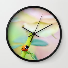 Ladybird on pink rose stem Wall Clock