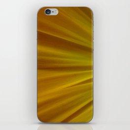 Yellow Aster iPhone Skin