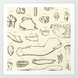 Paleo Dentistry Art Print
