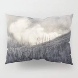 Steamy Forest -  Yellowstone National Park Pillow Sham
