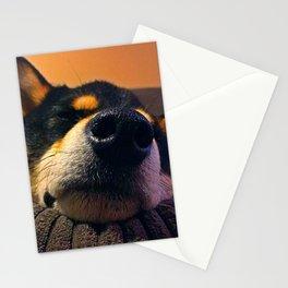 Kuma Close-up Stationery Cards