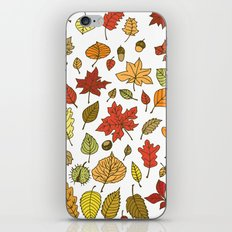 Autumn leaves, berries and nuts iPhone & iPod Skin