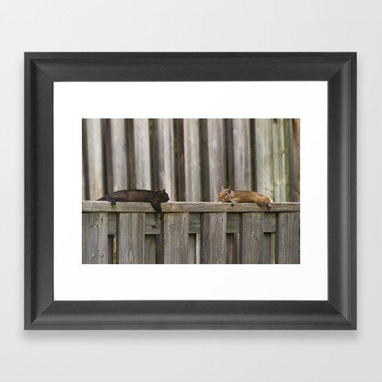 Squirrels Chilling Framed Art Print