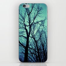 Blue Winter Trees iPhone Skin