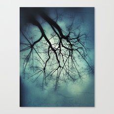 Floating... Canvas Print