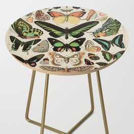 Papillon II Vintage French Butterfly Chart by Adolphe Millot Side Table