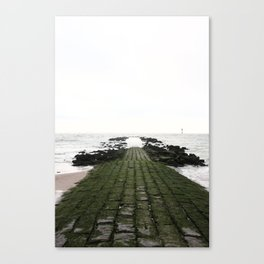 Look at the Sea Canvas Print