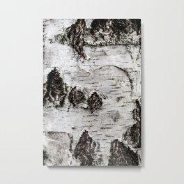 Birch Tree 2 Metal Print