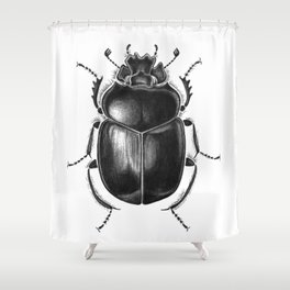 Beetle 13 Shower Curtain