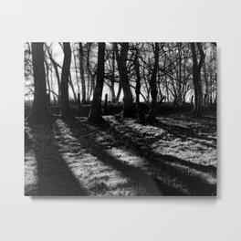 If You Go Down to the Woods Today... Metal Print