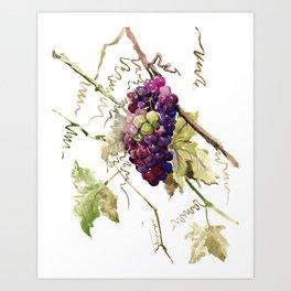 Grapes, California Vineyard Wine Lover design Art Print