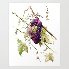 Grapes, California Vineyard Wine Lover design Kunstdrucke