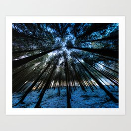 Oblivion Forest                   ( color ) Art Print