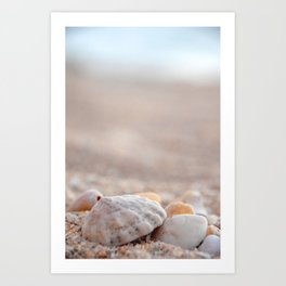 She Sells Sea Shells Art Print