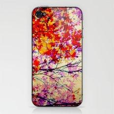 Autumn 5 iPhone & iPod Skin