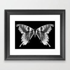 Wings and Skull #5 Framed Art Print