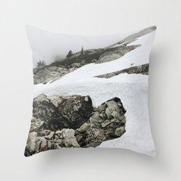 Snowy Cascade Trail Throw Pillow