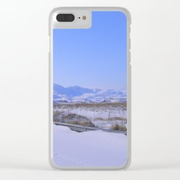 Airliner35 Clear iPhone Case