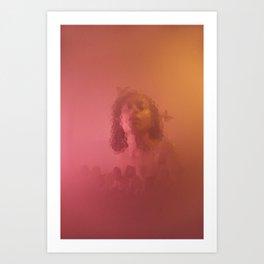 COMB - HILLARY Art Print