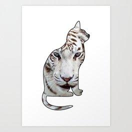 WHITE CATS Art Print