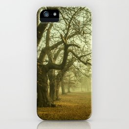 The Winter Trees iPhone Case