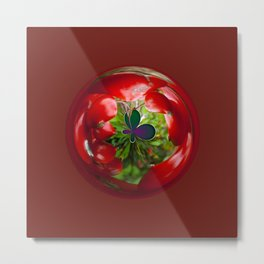 Butterfly Globe with red berries. Metal Print