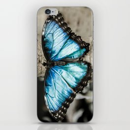 Black And White Blue Morph Butterfly iPhone Skin