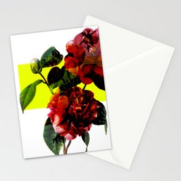 Vintage Blooms /Neon Block Stationery Cards