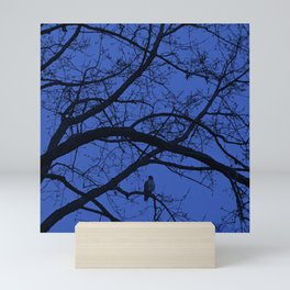 Hawk in Tree Mini Art Print