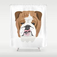 english bulldog Shower Curtains featuring English bulldog by Hedera